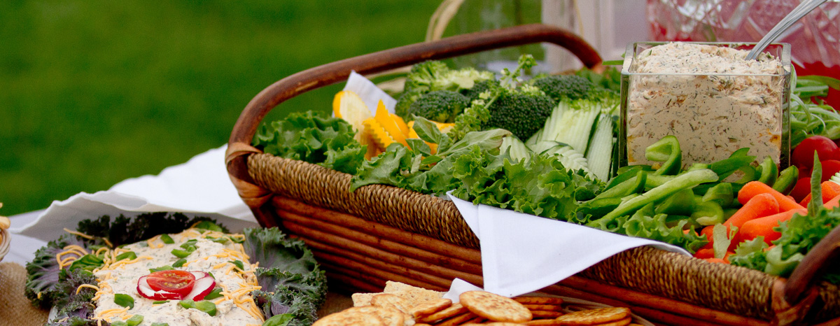 Catered Picnic Grand Rapids